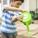 Montessori garden